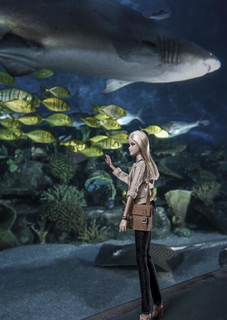 http://arihatzis.com/files/gimgs/th-34_Barbie-Aquarium_4583FLAT.jpg