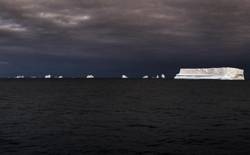 http://arihatzis.com/files/gimgs/th-45_Ari_Hatzis_Antarctica03_9x12.jpg